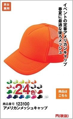 アメリカンメッシュキャップ123100